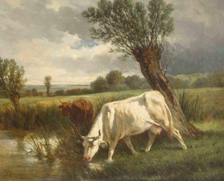 raczynski